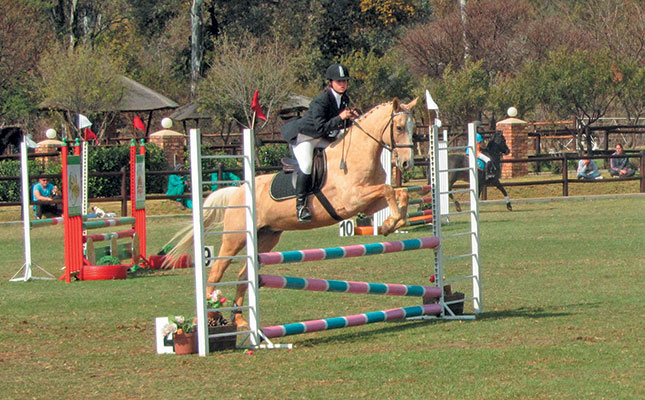 How stride length influences your horse's jump